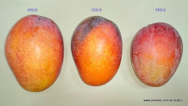 眼鏡伯外銷芒果規格比例圖